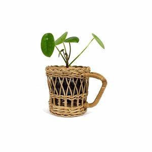 Vintage Wicker Rattan Cup Holder / Plant Holder